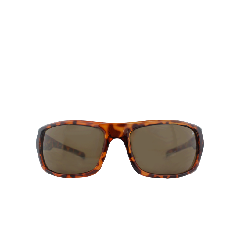 Brunotti La Barra 1 Men Eyewear (Brown) - MEN SUNGLASSES - Brunotti online shop