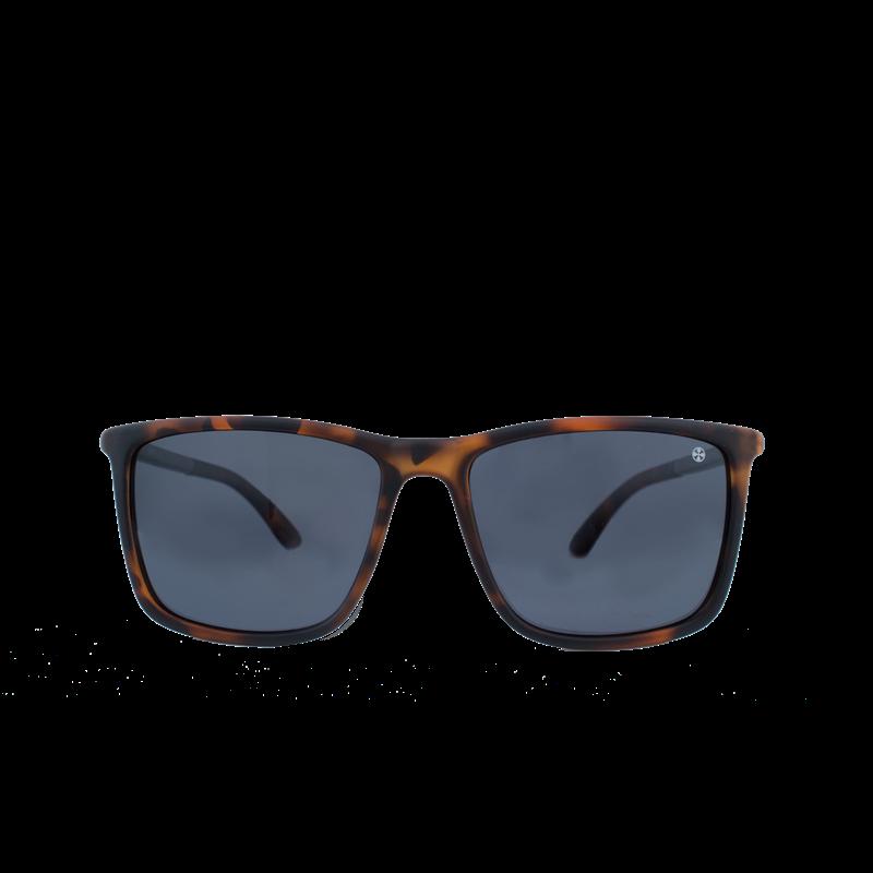 Brunotti Hadeo 1 Men Eyewear (Brown) - MEN SUNGLASSES - Brunotti online shop