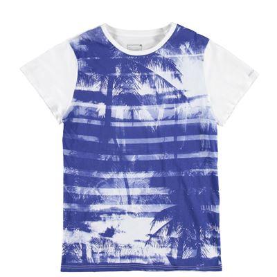 Brunotti Andante P-117 Men T-shirt. Beschikbaar in S,L,XL (161216919-000)