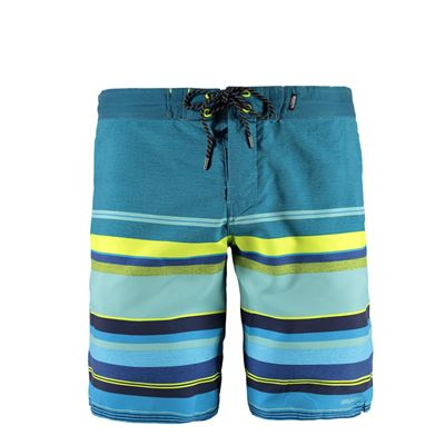 Brunotti Leeboard Men Shorts. Available in: S,L,XL,XXL (1711046017-0628)