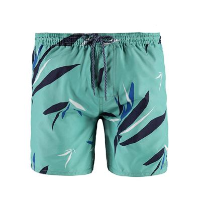Brunotti Tropic Men Shorts. Beschikbaar in S,M,L,XL,XXL (1711046026-0458)