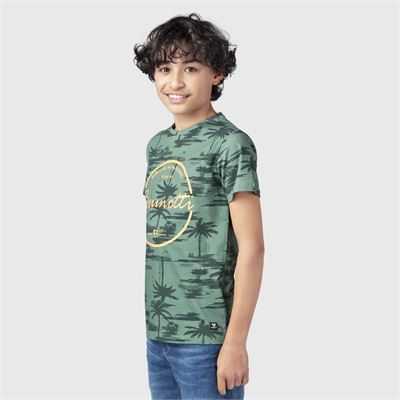 Brunotti Ben-AO-JR Boys T-Shirt. Available in 128,140,152,164,176 (2113100757-6500)